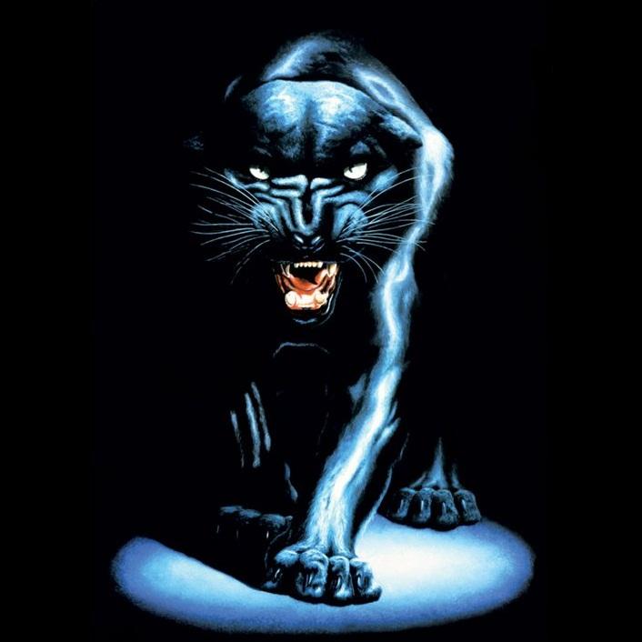 Panther788