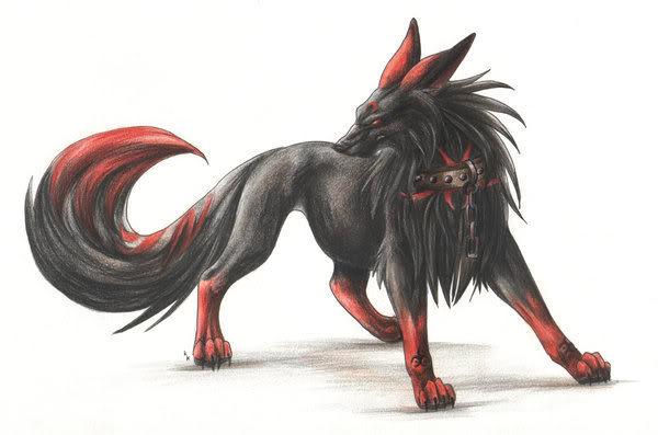 wolf12345