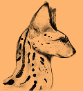 KuraiAme