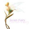 secret-fairy