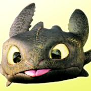 Ornithogalum