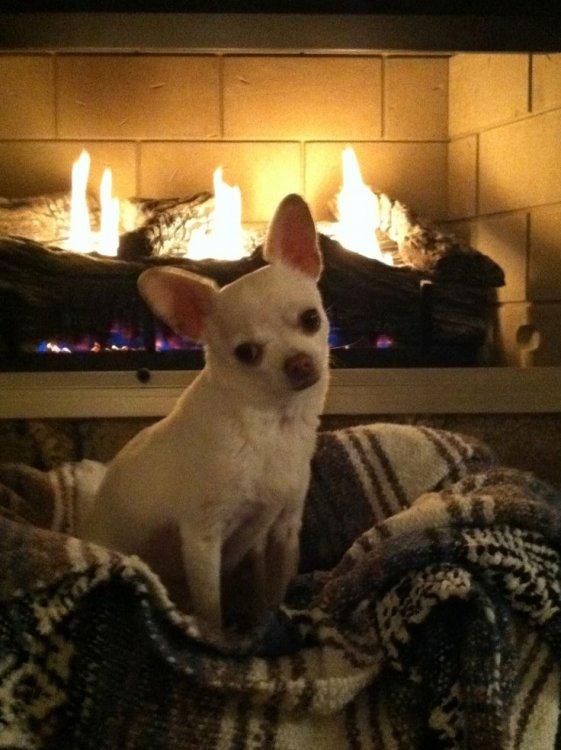chi fireplace.jpg