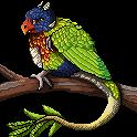 Dragonwhisper23