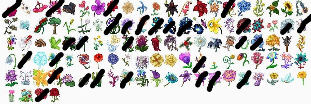 FLOWERS NEEDED 2.jpg