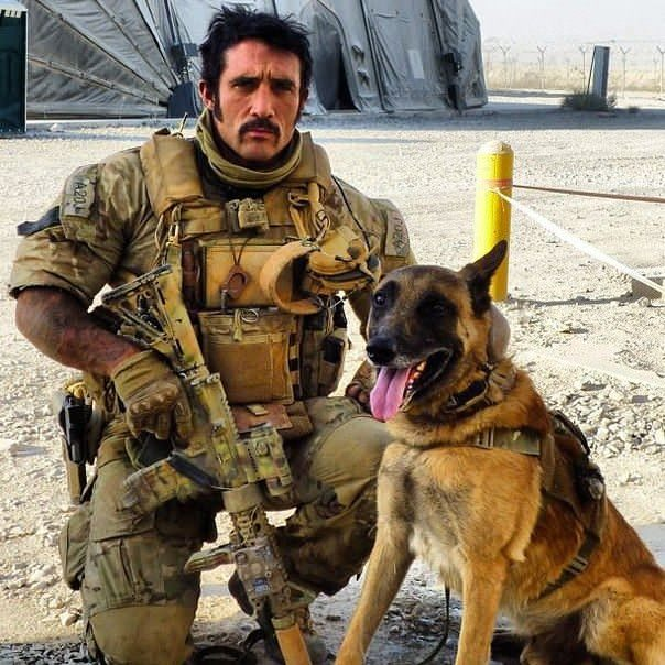 British SAS combat dog.jpg