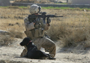 Lance Cpl Jeff DYoung and Cena in Afghanistan.jpg