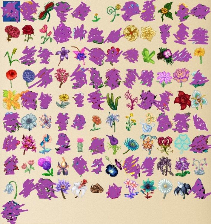 MissingFlowers01.thumb.jpg.7964463c2c62a0c01b838b055f040973.jpg
