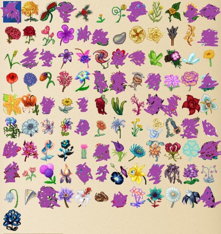 MissingFlowers01.thumb.jpg.94c0e24952cc66d31d923c6577800fb9.jpg