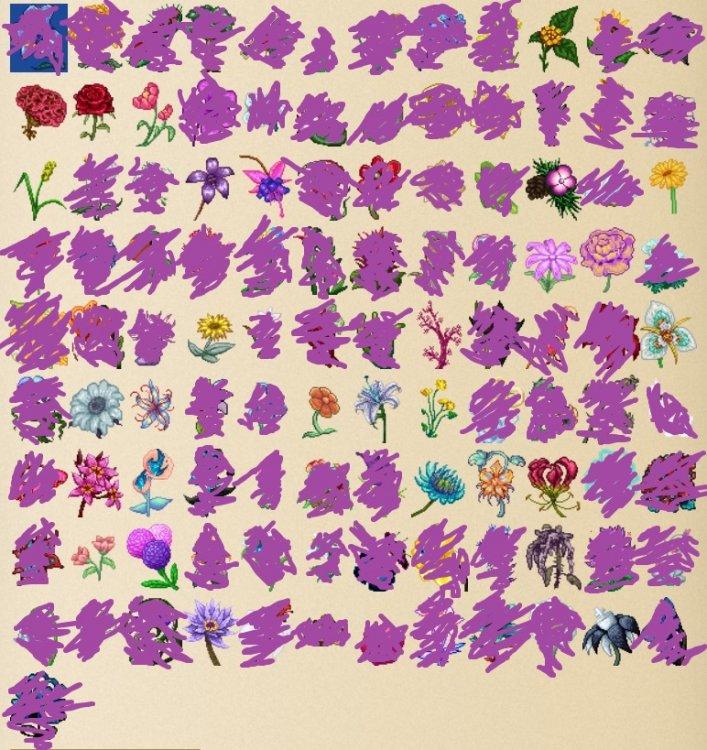 MissingFlowers01.thumb.jpg.ac3faa752dbd95cda424b2fdd246848e.jpg