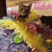 Tikifish