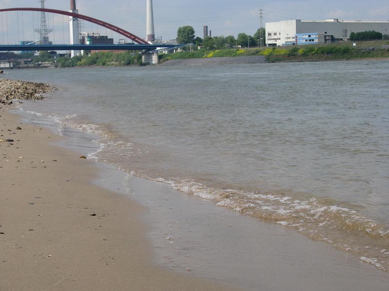 Rhein.png.49484ac3038b17d526bc585000bf8ec1.png