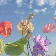 flower1818
