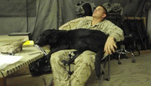 DeYoung and Cena catching a nap in Afghanistan.jpg
