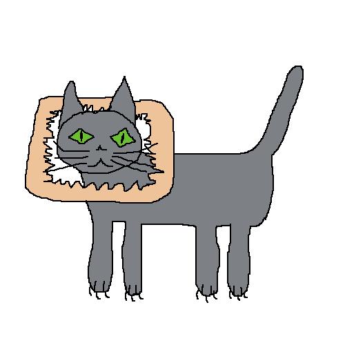 cat2_2.png.49987d172200b9f7844a66e17c8c09fd.png